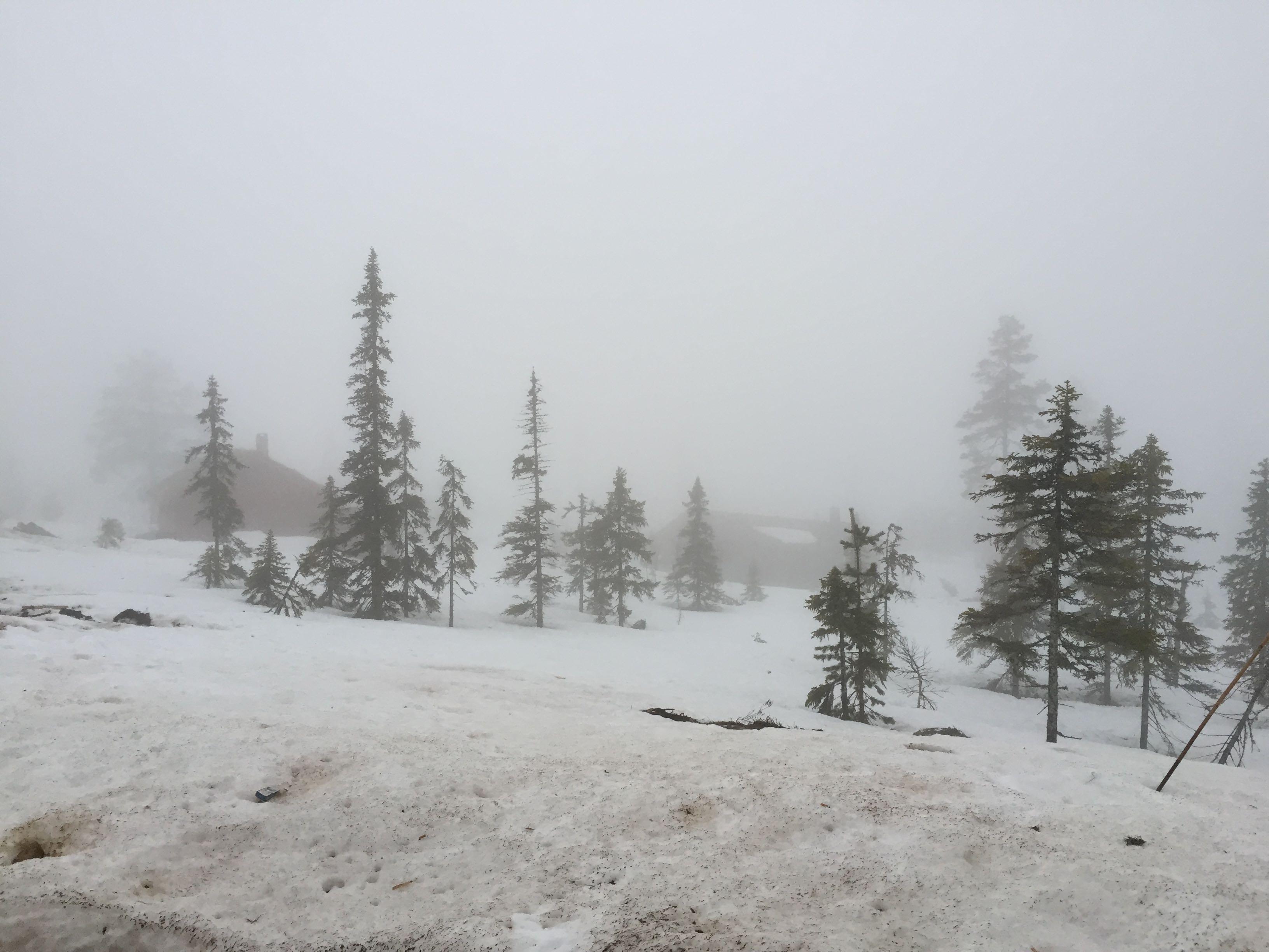 Tåke skal visstnok smelte snø raskere, så yay for tåke!